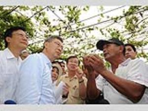 Premier Chen surveys damage to bitter gourds in Changhua County